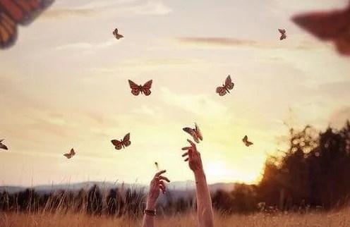 mani che afferrano le farfalle