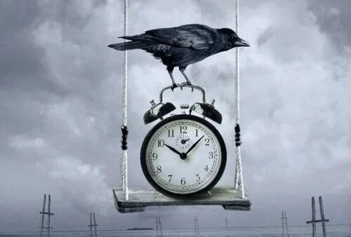 corvo con tempo