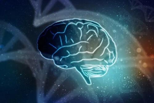 Desenho de um cérebro