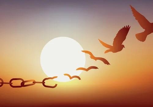 Cadenas transformándose en pájaros libres simbolizando lo que lo que necesita la condición humana según Erich Fromm