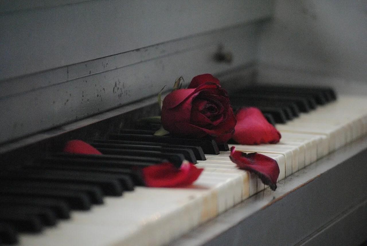 El sndrome del corazn roto  La Mente es Maravillosa
