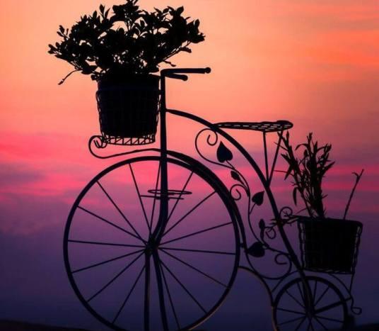 bicileta al al atardecer