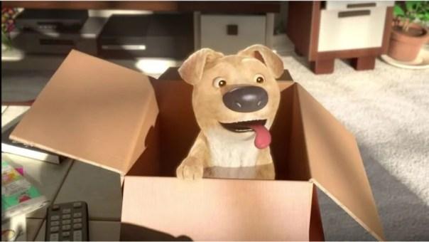 corto-the-present, perro en un caja