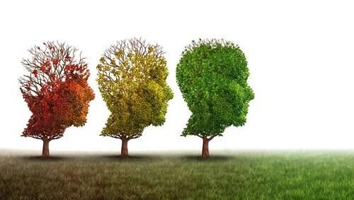 Árboles simbolizando el deterioro cognitivo leve