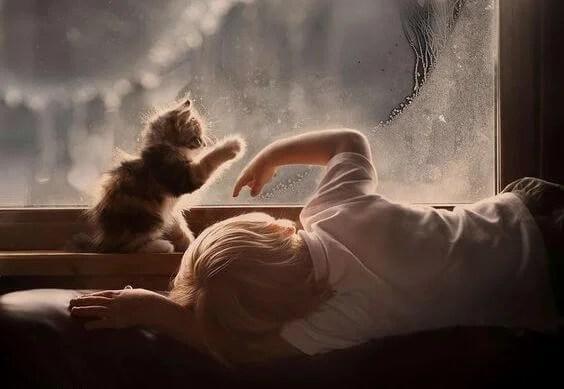 niño con gato