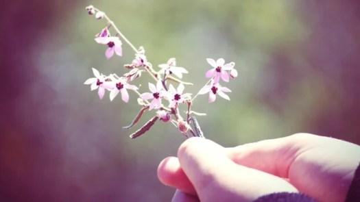 mano sosteniendo flor representando las frases de Fritz Perls