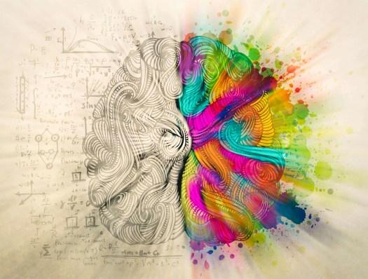 Hemisferios del cerebro coloreados