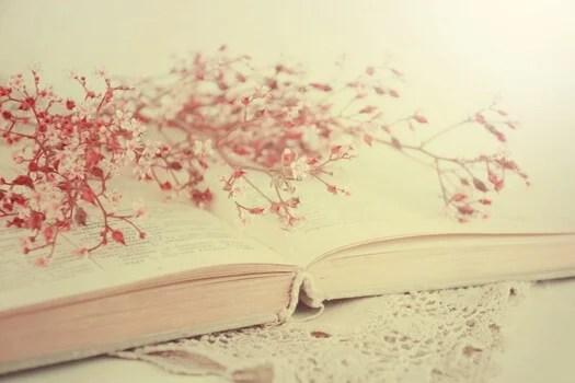 libro abierto con flores rojas representando las frases de Alejandra Pizarnik