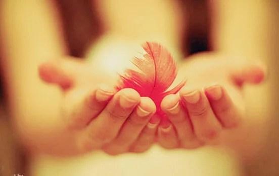 La amabilidad, una fuerza que derriba cualquier muro