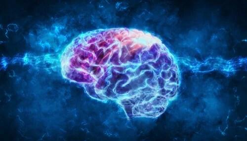 Cerebro iluminado para representar la corteza entorrinal