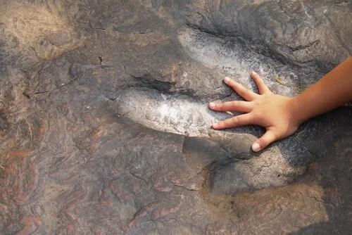 Niño poniendo mano en la huella de un dinosaurio