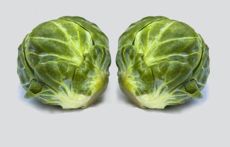 mesa-habla-verdura-brasa-coles-bruselas