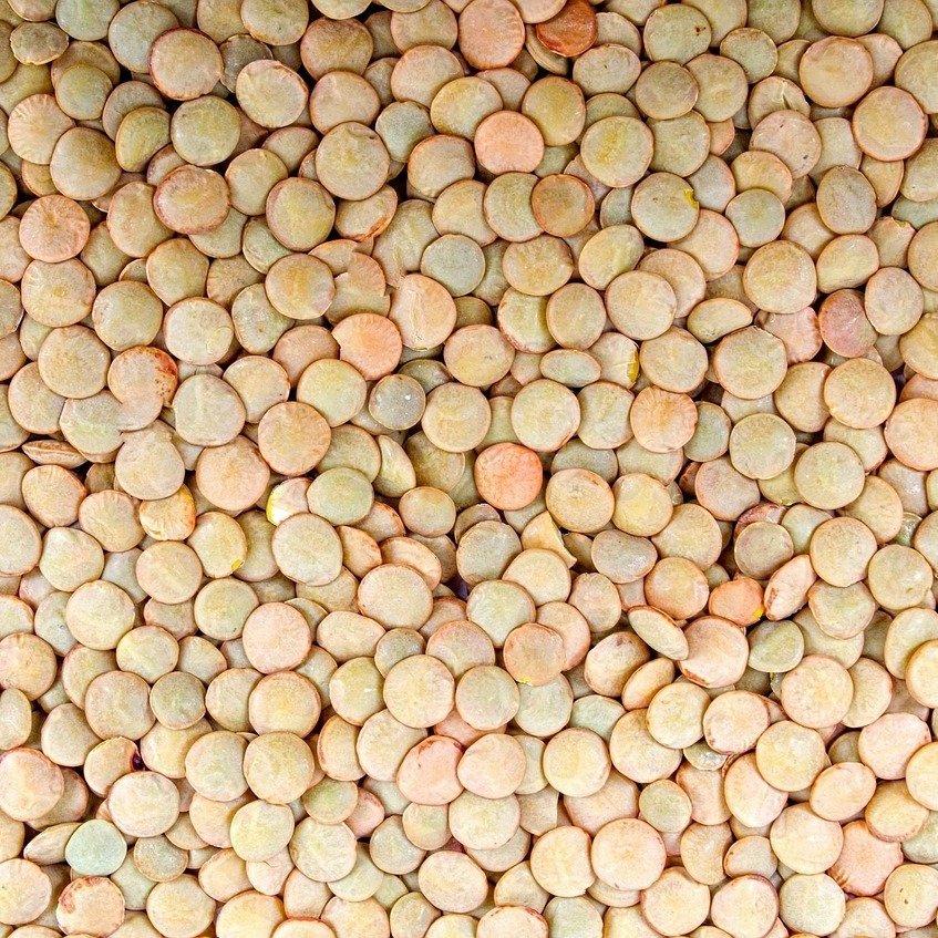 mesa-habla-legumbres-lentejas 2
