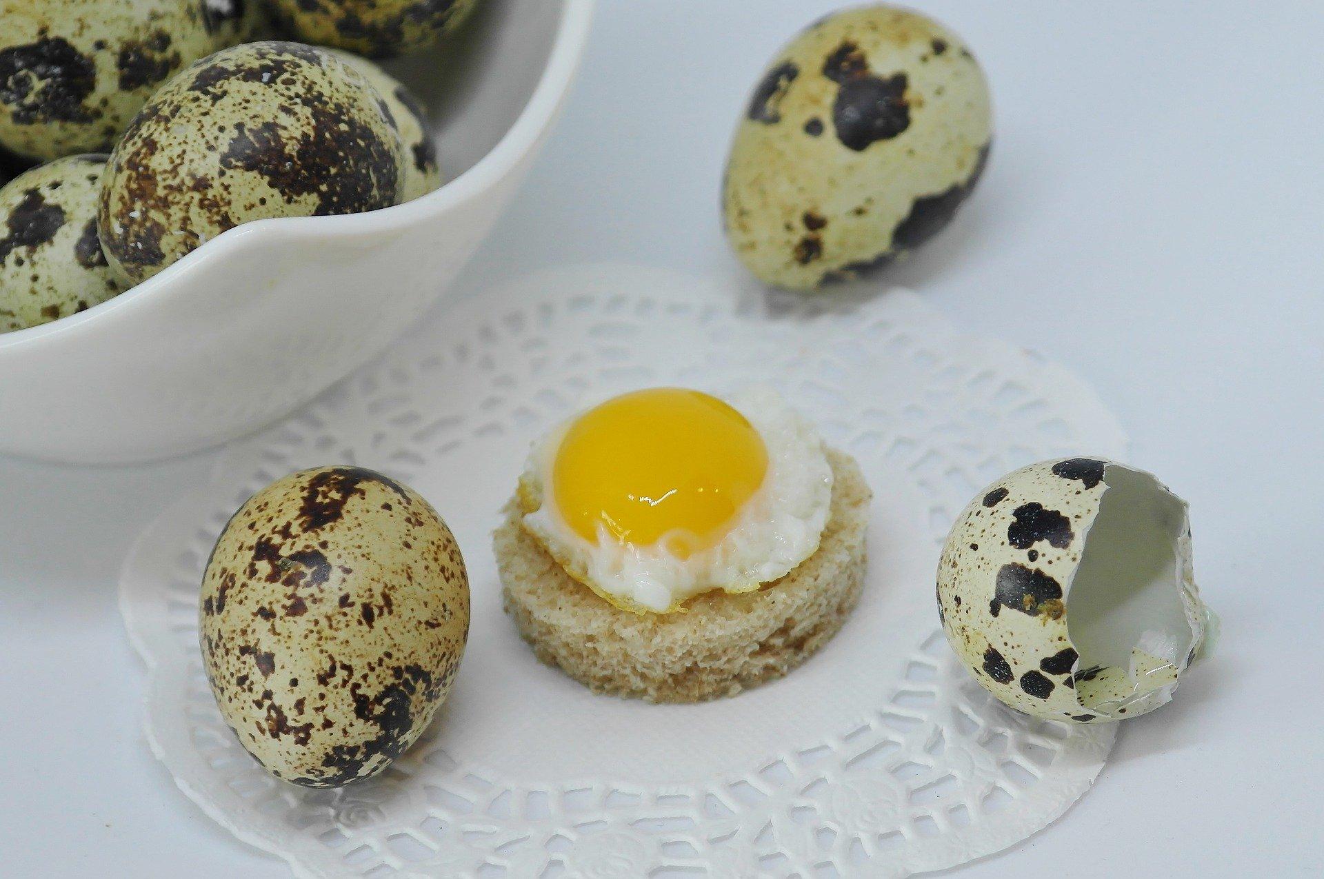 mesa-habla-huevos-codorniz