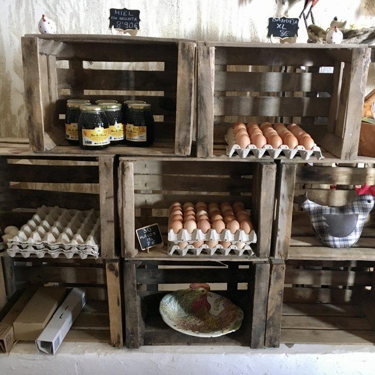 mesa-habla-huevos-ecologicos-barja 17