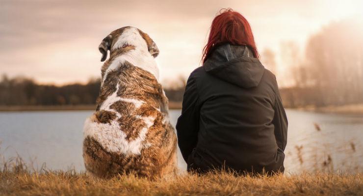Giornata Mondiale del Cane, il 26 agosto si celebra il legame tra uomo e animale