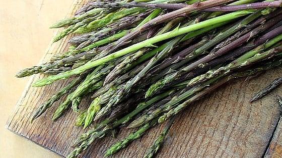 E' tempo di Asparagi selvatici: dove raccoglierli e una ricetta made in Puglia