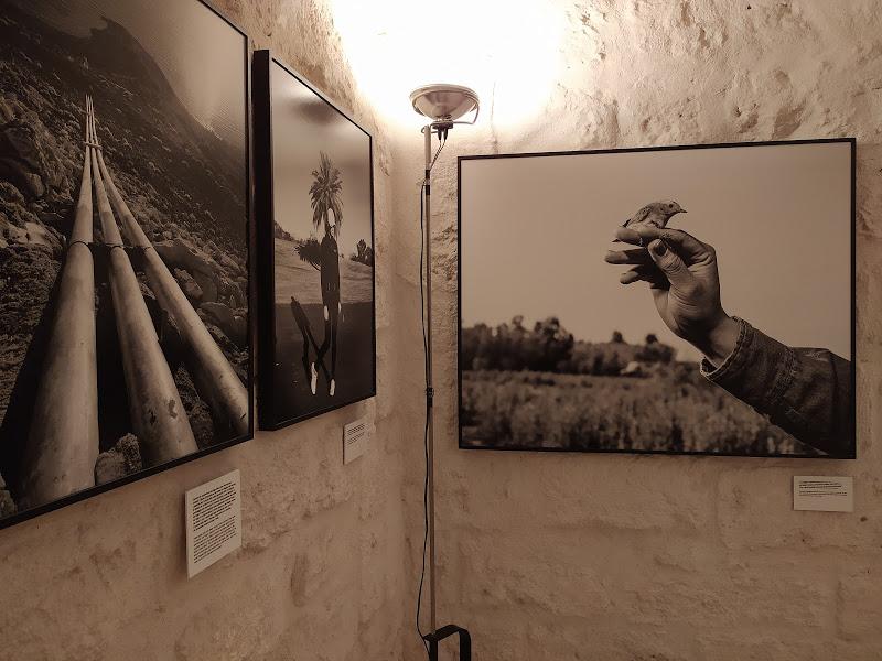 """PhEST 2020 a Monopoli (Ba): il tema della mostra internazionale di fotografia è """"Terra"""""""