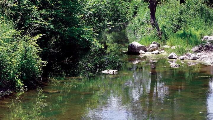 Parco Naturale Regionale del fiume Ofanto: il docu-film del prof. Giuseppe Cava