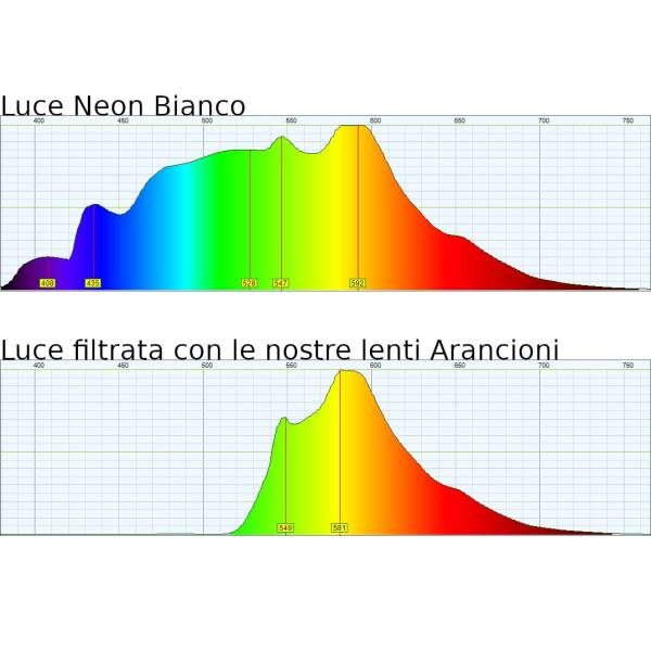 Spettrometro Lenti Arancioni