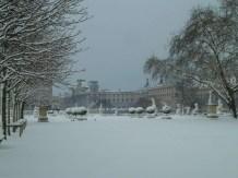Musée du Louvre - @MuseeLouvre - Tuileries - 7 feb