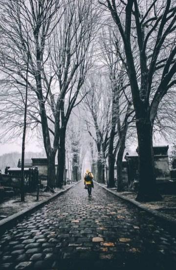 Paris je t'aime - @ParisJeTaime - cimetière - 8 feb