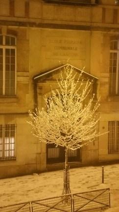 pheniX, Paris
