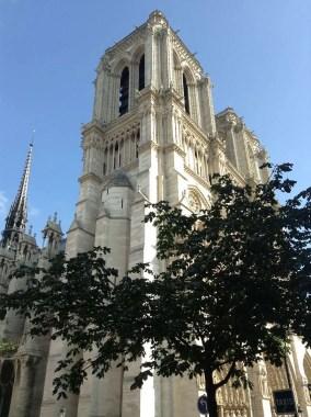 Notre-Dame de Paris facciata lato sx