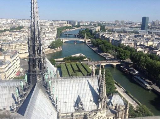 Tetto e guglia Notre Dame sulla Senna