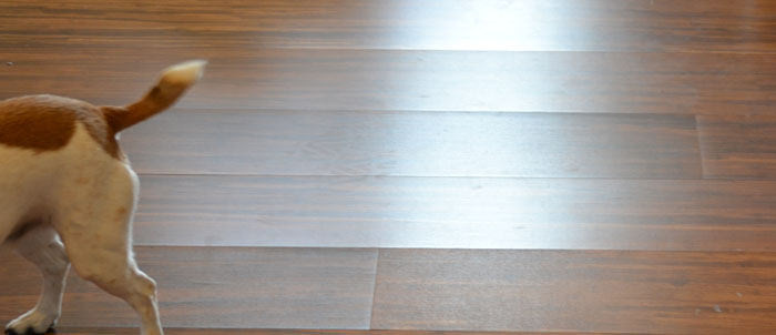 Laminate Floor Peaking Laminate Floor Problems