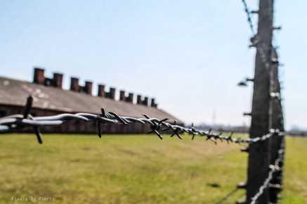 Auschwitz 1 - Photo: Flavia Di Pierro