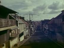 La Soufriere (Herzog, 1977).avi_snapshot_06.49_[2016.02.16_13.34.27]