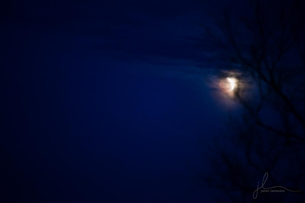 blood moon IMG_0679