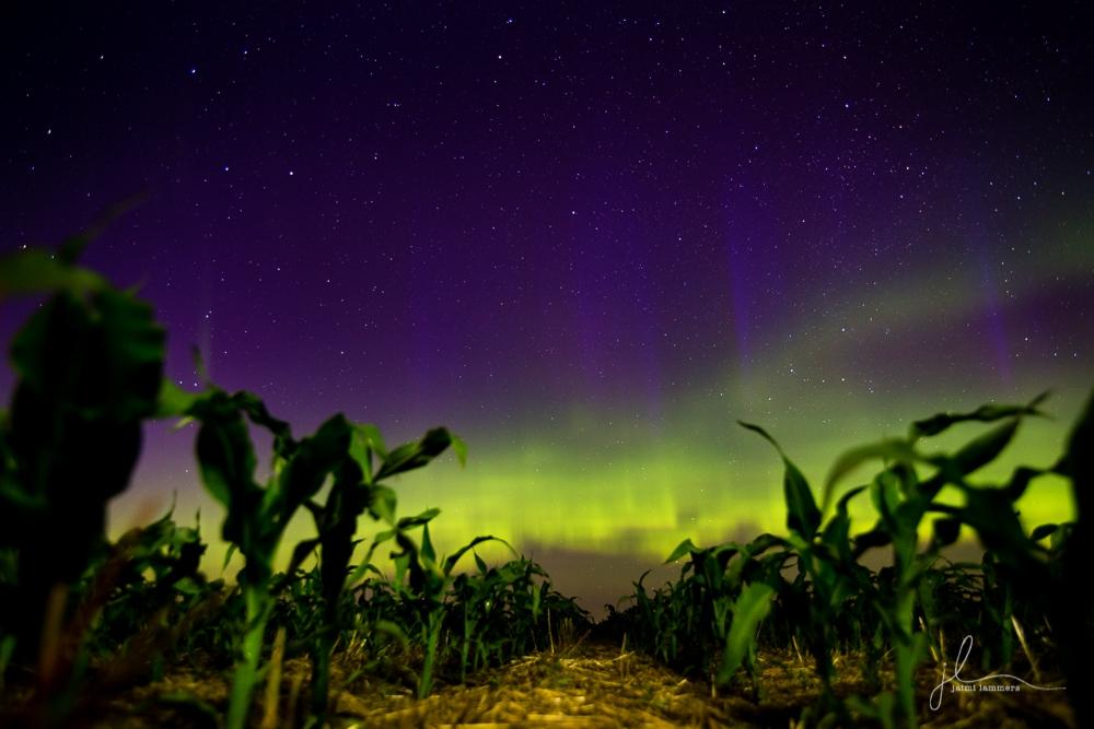 Northern Lights-0187