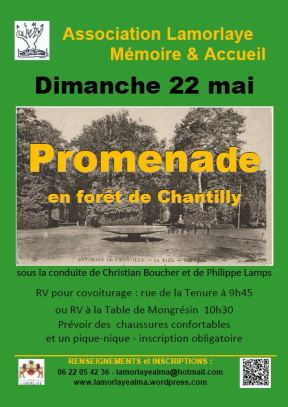affiche-foret