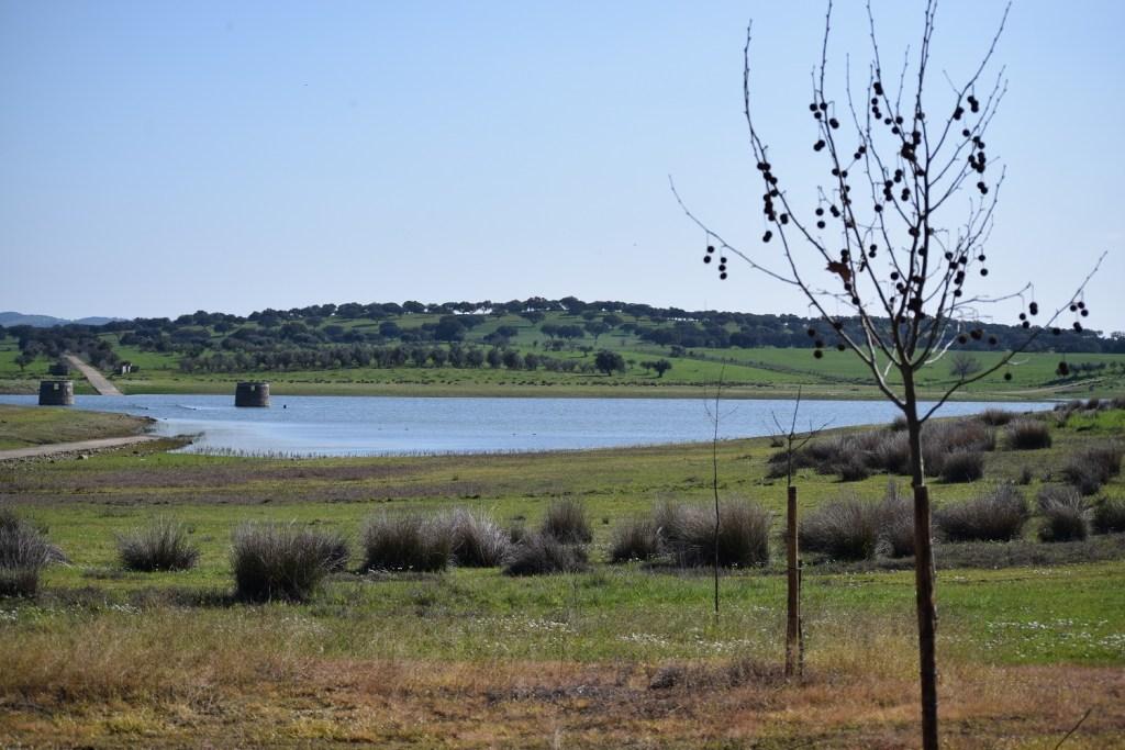 Les terres sauvages de l'Alentejo