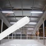 25er Sparpack   LED Tube G13