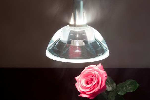 hanging pendant light with flower