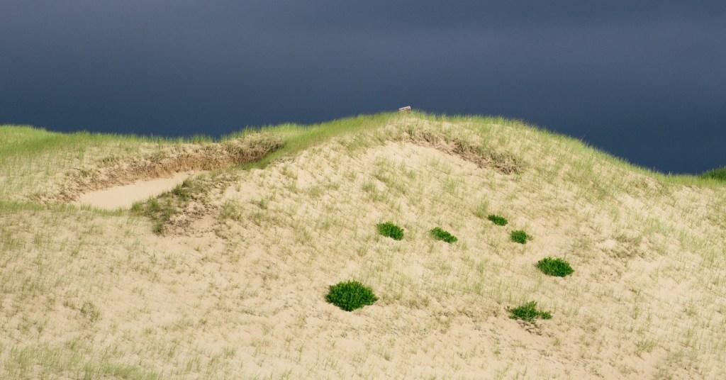 Une lumière dramatique sur des dunes