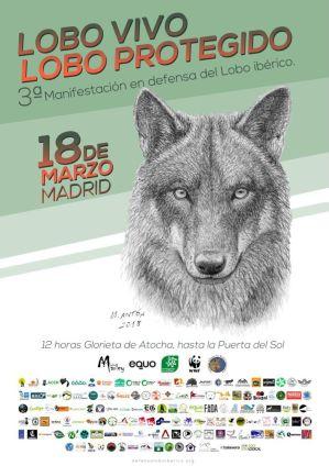 Lobo vivo lobo protegido