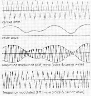 Why is the sound quality for AM and FM radio so different