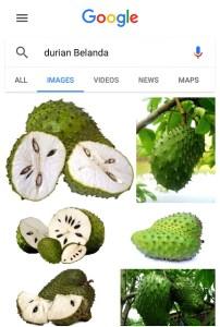 Ekstrak Durian Belanda Jus Annona Halang Perkembangan Sel Kanser