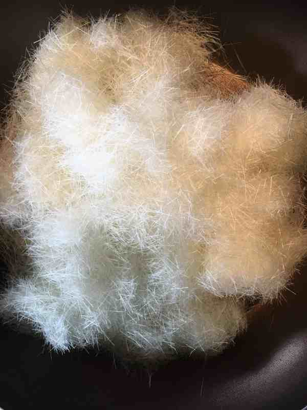 Polypropylene Fibers ready to add to your plaster mix!