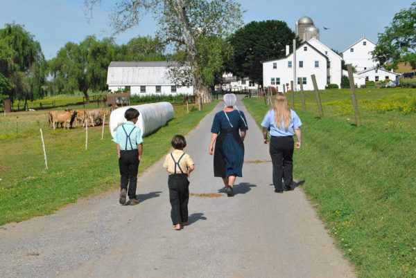 Amish Visit-in-person Tours Events