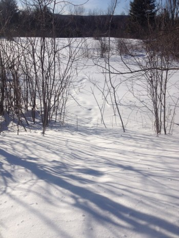 Wintery hike.