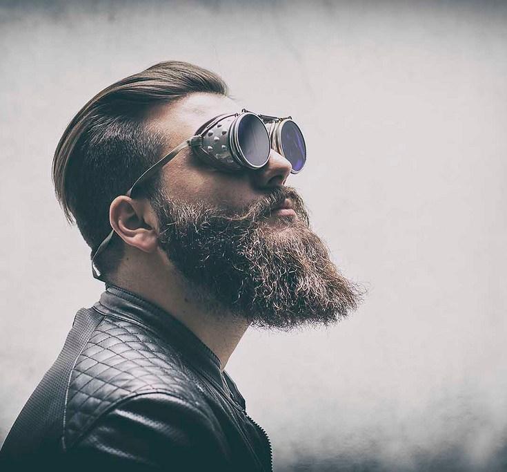hipster fallacies lancelot schaubert