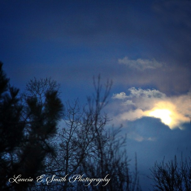March moon rising