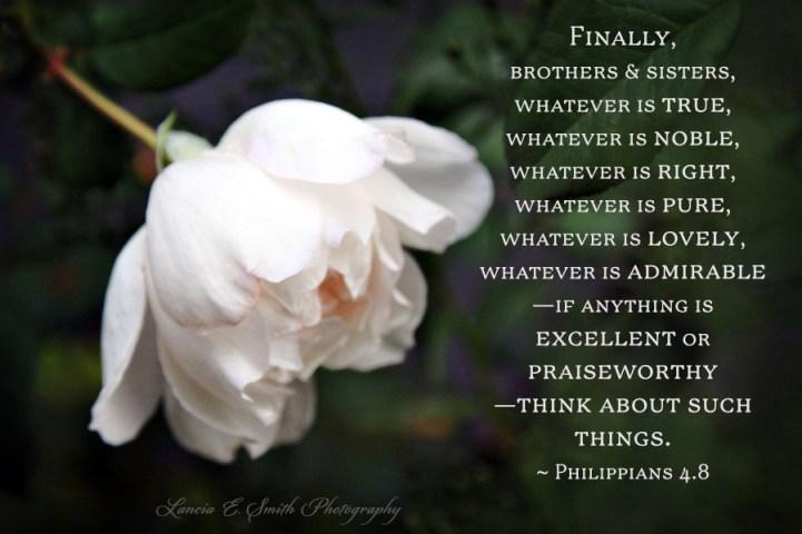 Bowing Generous - Philippians 4.8