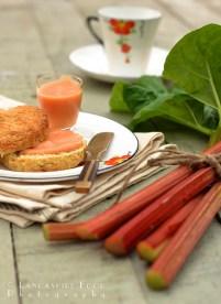 Rhubarb and Vanilla Curd