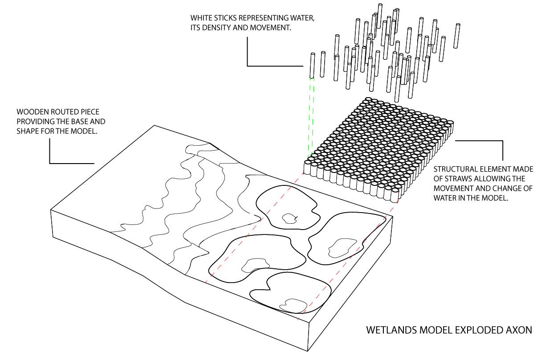 Wetlands Axon